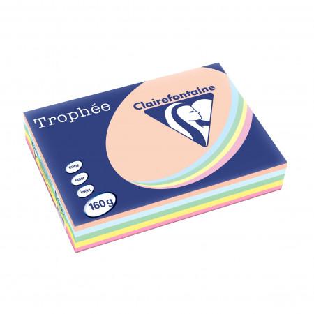 Papier Trophée assorti
