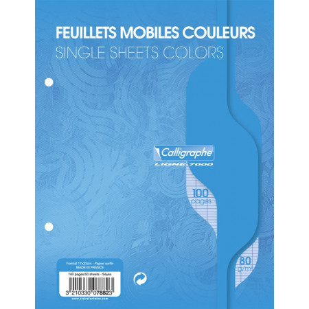 FEUILLES MOBILE SIMPLES 17X22 SEY PERFOREE BLEU