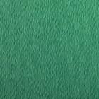 PAPIERS COULEURS 50X65 160GR - VERT FONCE