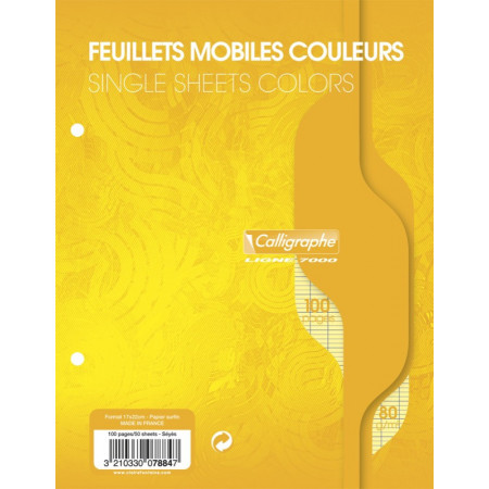 FEUILLES MOBILE SIMPLES 17X22 SEYES PERFOREE JAUNE